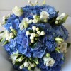 Cool blue hydrangea with scented freesia and bouvardia, Bride's handtied bouquet.